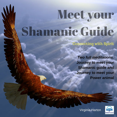 Meet Your Shamanic Guide front cover