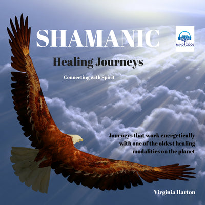Shamanic Healing Journeys front cover