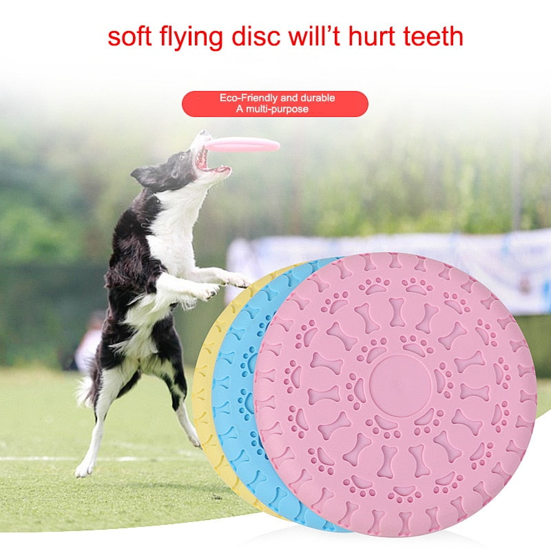 Dog flying disk is agility training equipment