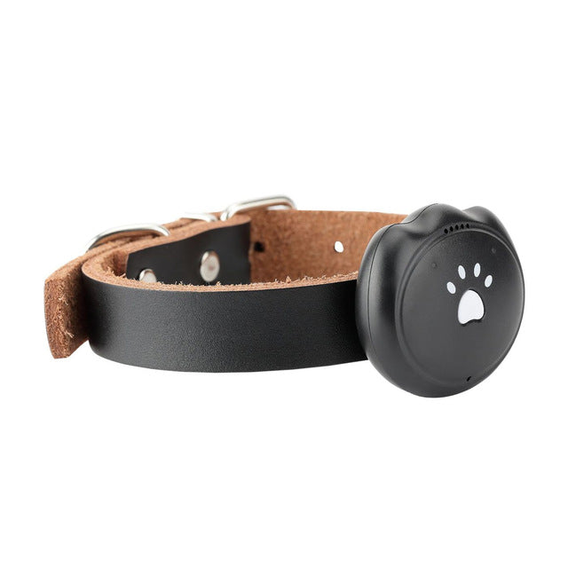 Homegard 2G Dog GPS Tracking Pet Finder Collar Safety Location Attachment