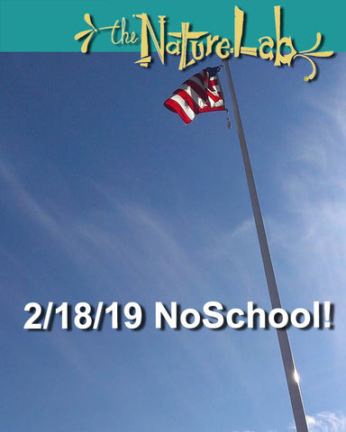 2/18/19  NoSchool?NatureLab!