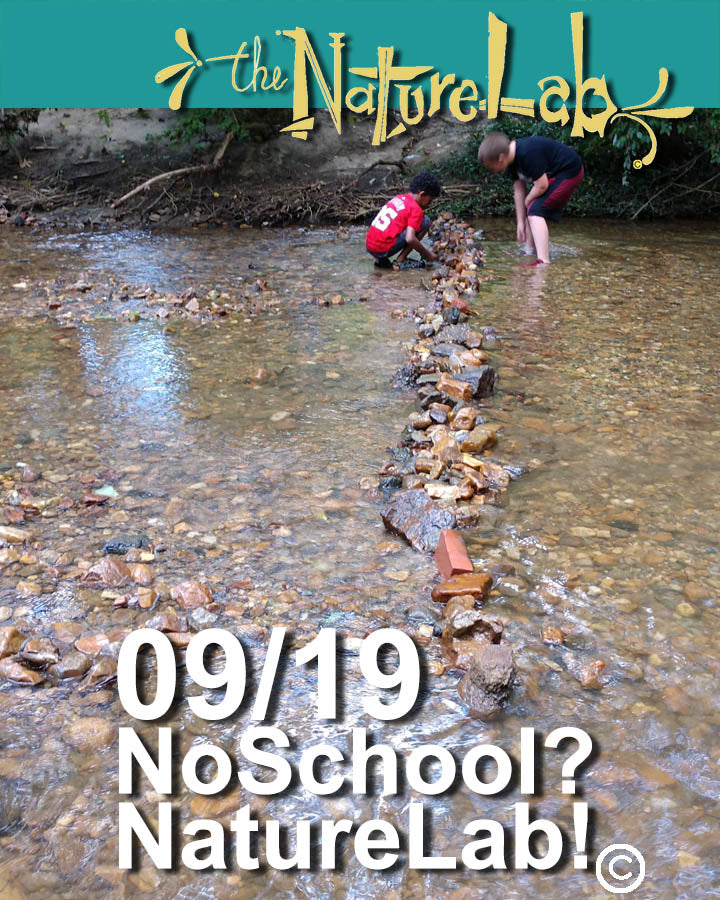 9/19  NoSchool?NatureLab!