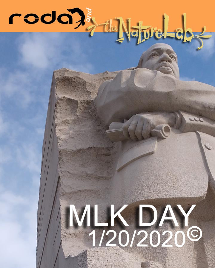 1/20/2020  NoSchool? MLK DAY!