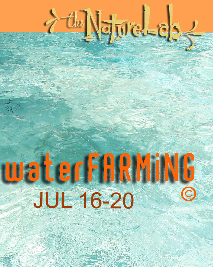 waterFARMING