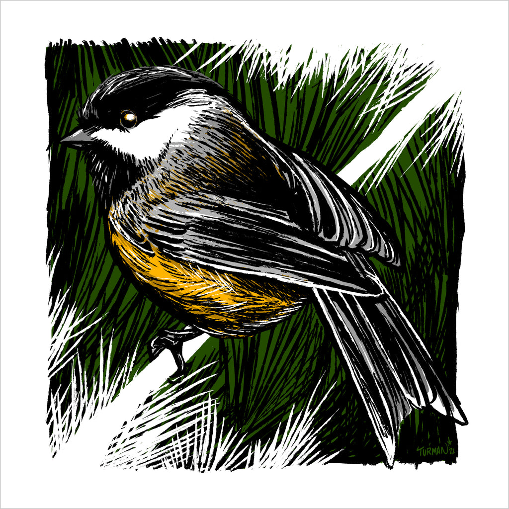The Black-Capped Chickadee's call is ChickaDeeDeeDee