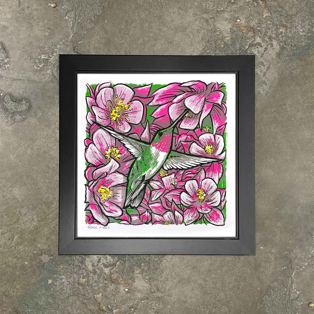 "Ruby-Throated Hummingbird Screen Print Framed ""Hover"" by Adam Turman"