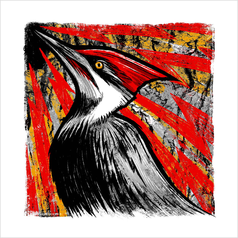 "Pileated Woodpecker Screen Print ""Knock-Knock"" by Adam Turman"