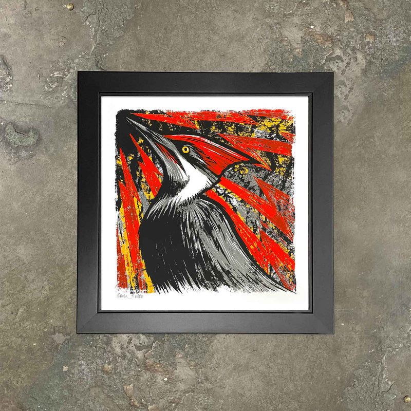 "Pileated Woodpecker Screen Print ""Knock-Knock"" Framed by Adam Turman"
