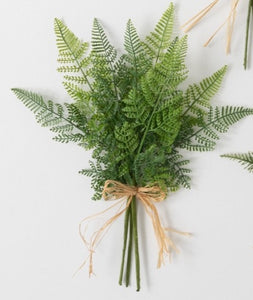 Wrapped Fern Bush 13.5