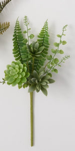 Succulent Fern Pick 14in