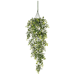 Boxwood/Berry Hanging Bush 32in