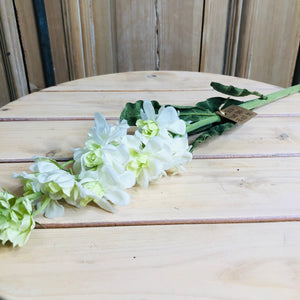 Stock Flower Stem, 30 inch