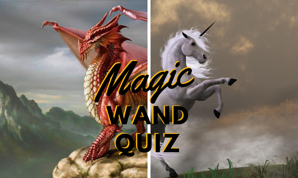 Magic Wand Quiz