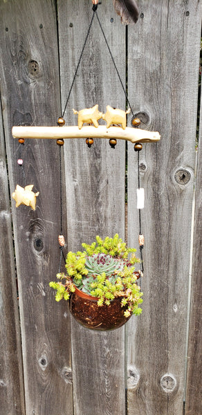 Flying pig . Coconut Shell Planter ,indoor or outdoor.weatherproof. changeable spinner