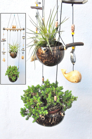 Coconut  double hanging planter ,Little dolphin,pigs and whale. weatherproof .