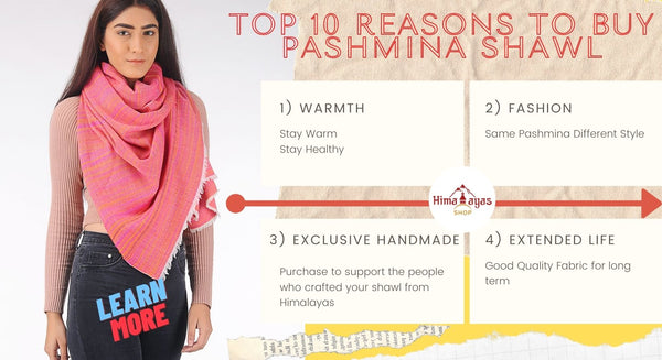 Top Guide on why to buy Pashmina Shawl for women