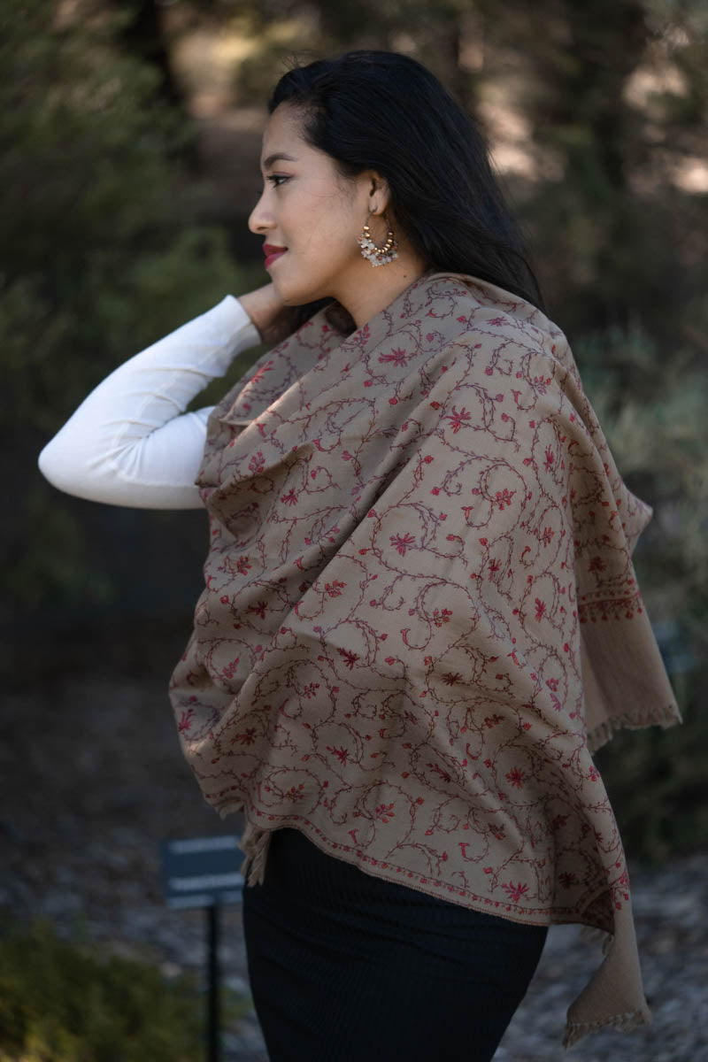 Women's scarves and wraps on pashmina shawl