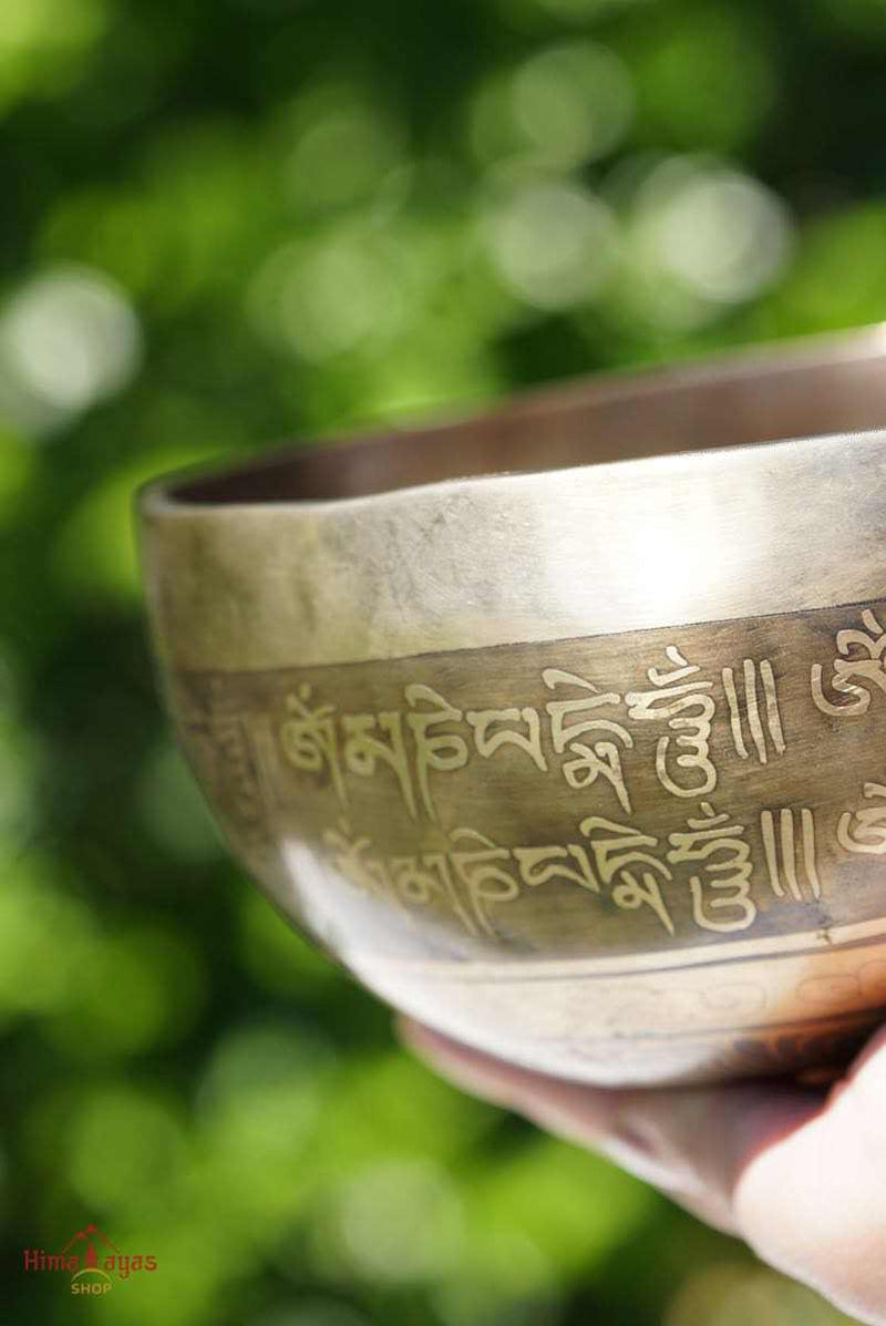 Tibetan Singing bowl for chakra healing and balancing. Find the best singing bowl at lowest price.