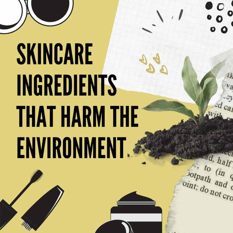 Skincare Ingredients That Harm the Environment