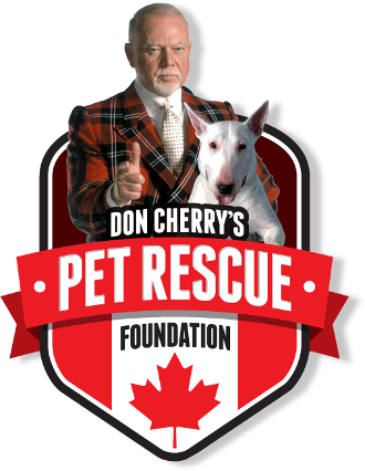 Don Cherry's Pet Rescue Foundation