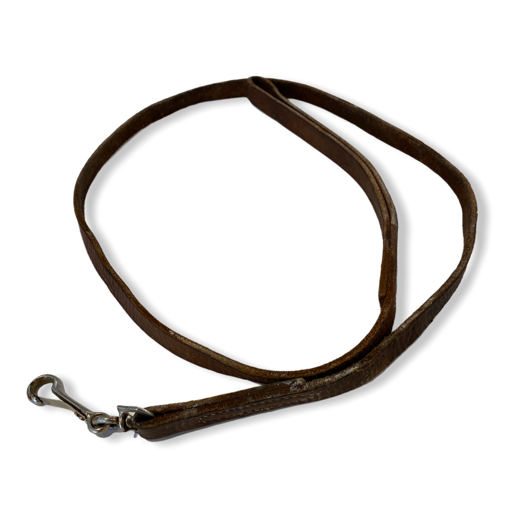 Little Leather dog leash