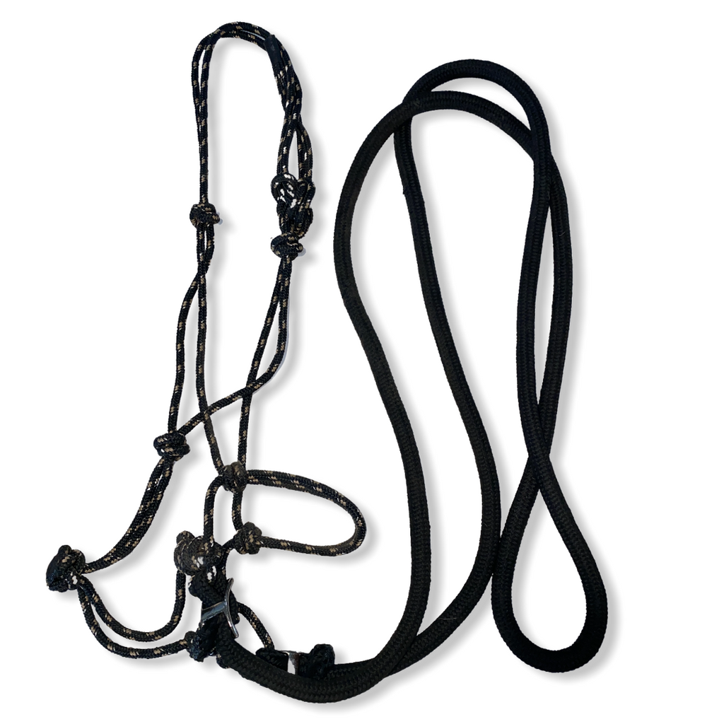 Bittless rope bridle
