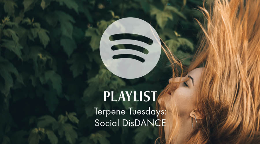 Terpene Tuesdays: Social DisDANCE Playlist