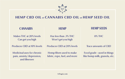 chart explaining the differences between cbd oil, hemp oil and hemp seed oil