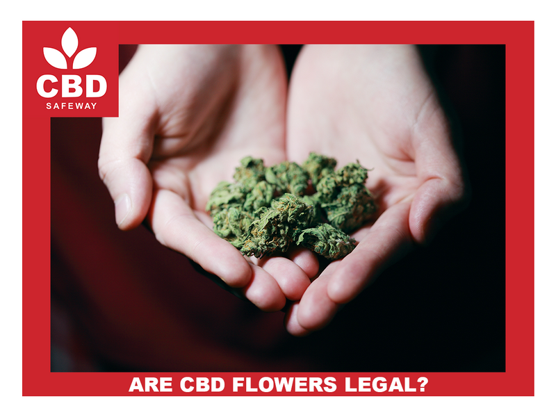 Are CBD Flowers Legal?