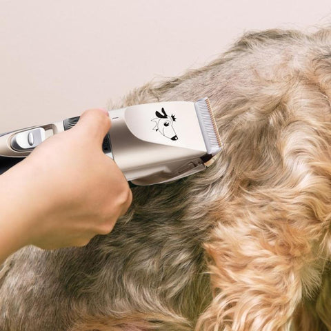 Human - New Electric Dog Grooming Kit