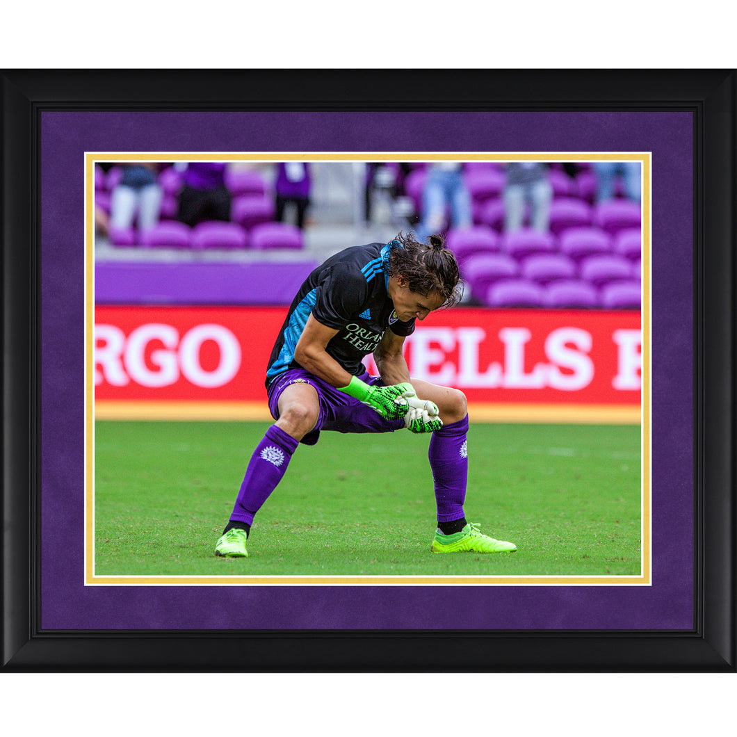 Rodrigo Schlegel Celebration Framed Picture 20