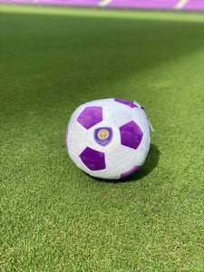Orlando City Plush Ball