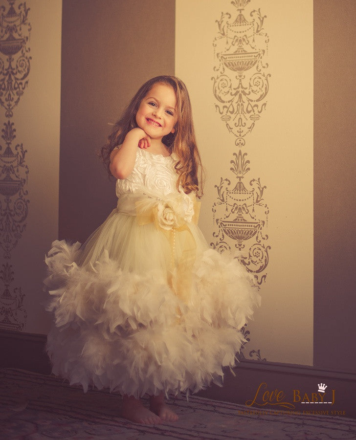 An Enchanted Heirloom - A Lovely Satin And Feather Ball Gown - Bon ...