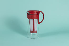 Short glass server with white nylon mesh coffee filter insert and Red plastic handle and lid.