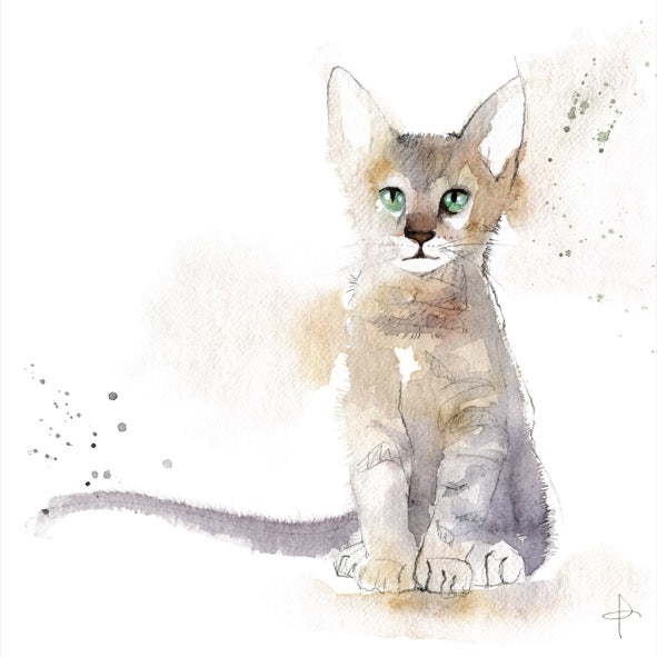 "7 Watercolour Cards Paintings ""Meow!"""