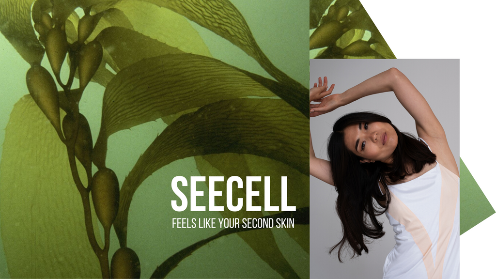 YUUGEN store blog post seaweed leticia credido
