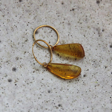 Load image into Gallery viewer, EWA WISNIEWSKA - Baltic Amber Earrings 3 - Yuugen Store