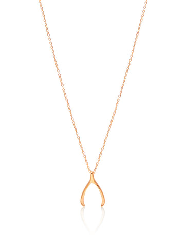 Skyfall Gold Wishbone Necklace
