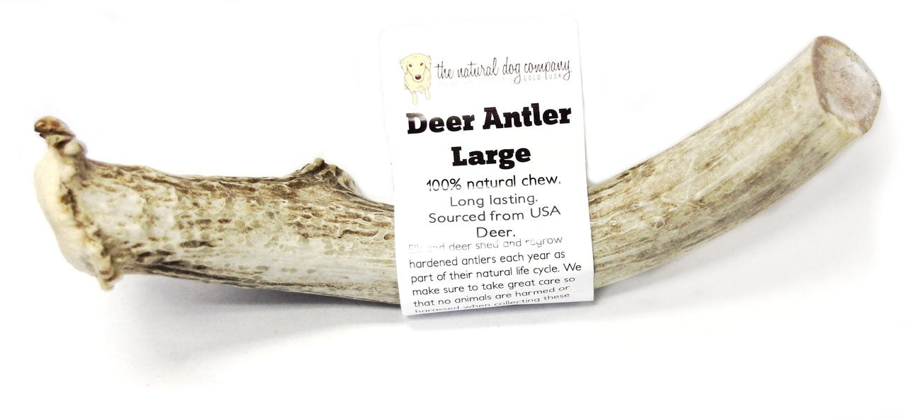 Deer Antler Chew - Large