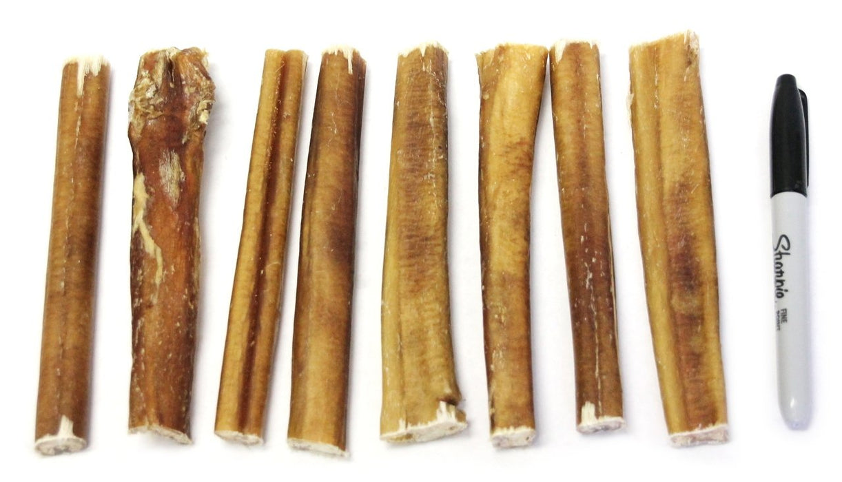 "6"" Thick Bully Sticks - Low Odor"