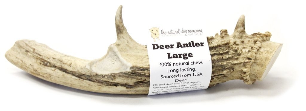 Deer Antler - Large