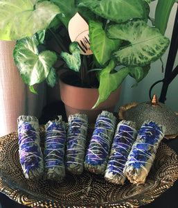 Purple daisy and sage bundle