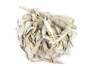 Loose White  Sage Leaf