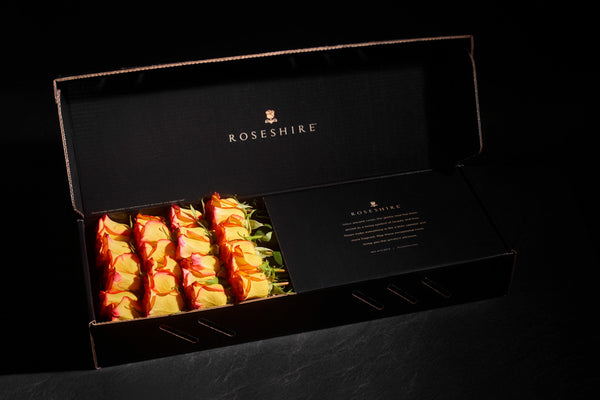 Roseshire Premium Yellow Roses in 2 Dozen Legendary Box