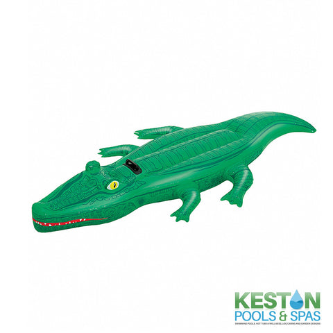 Crocodile Inflatable Ride On