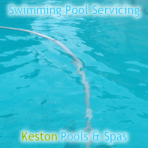 Swimming Pool Service