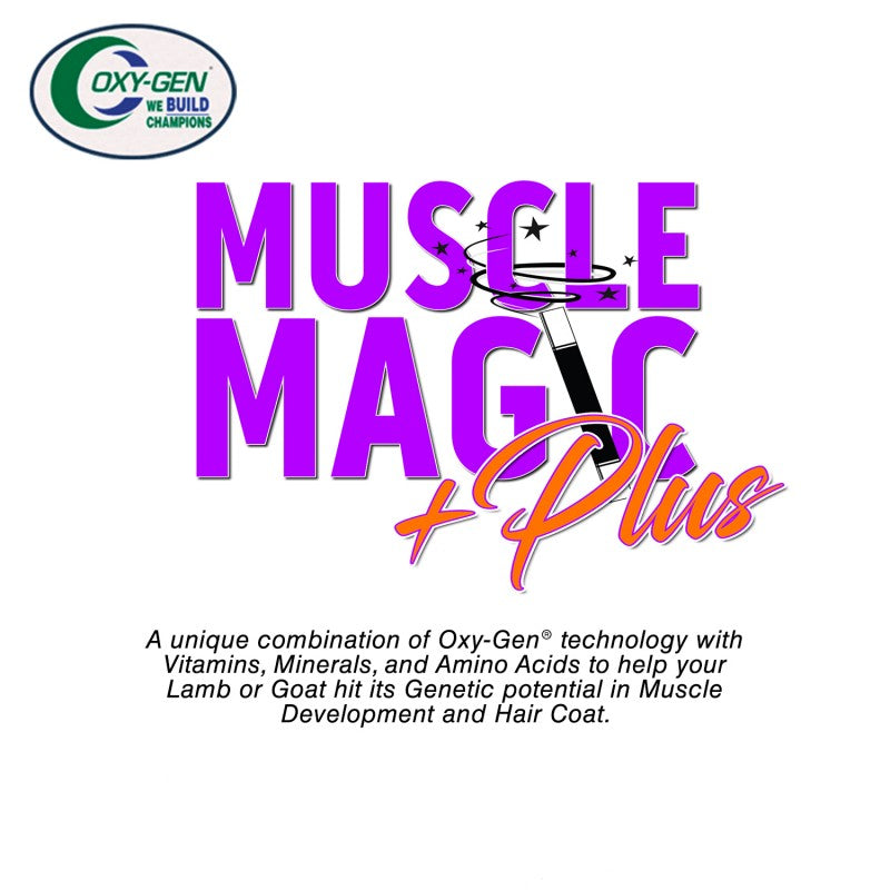 Muscle Magic Plus