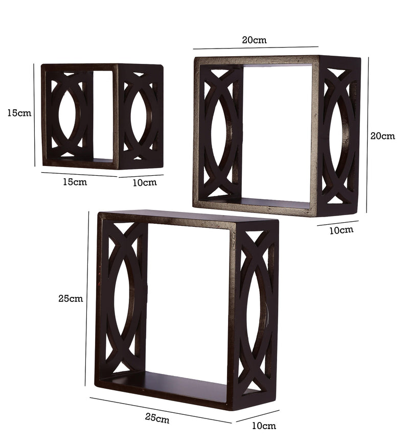 Elegant Floating Wall Shelf ( Set of 3)