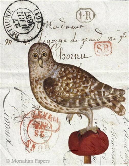 monahan paper H18bb Owl on Red Tuft