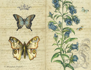 monahan papers butterflies and campanula